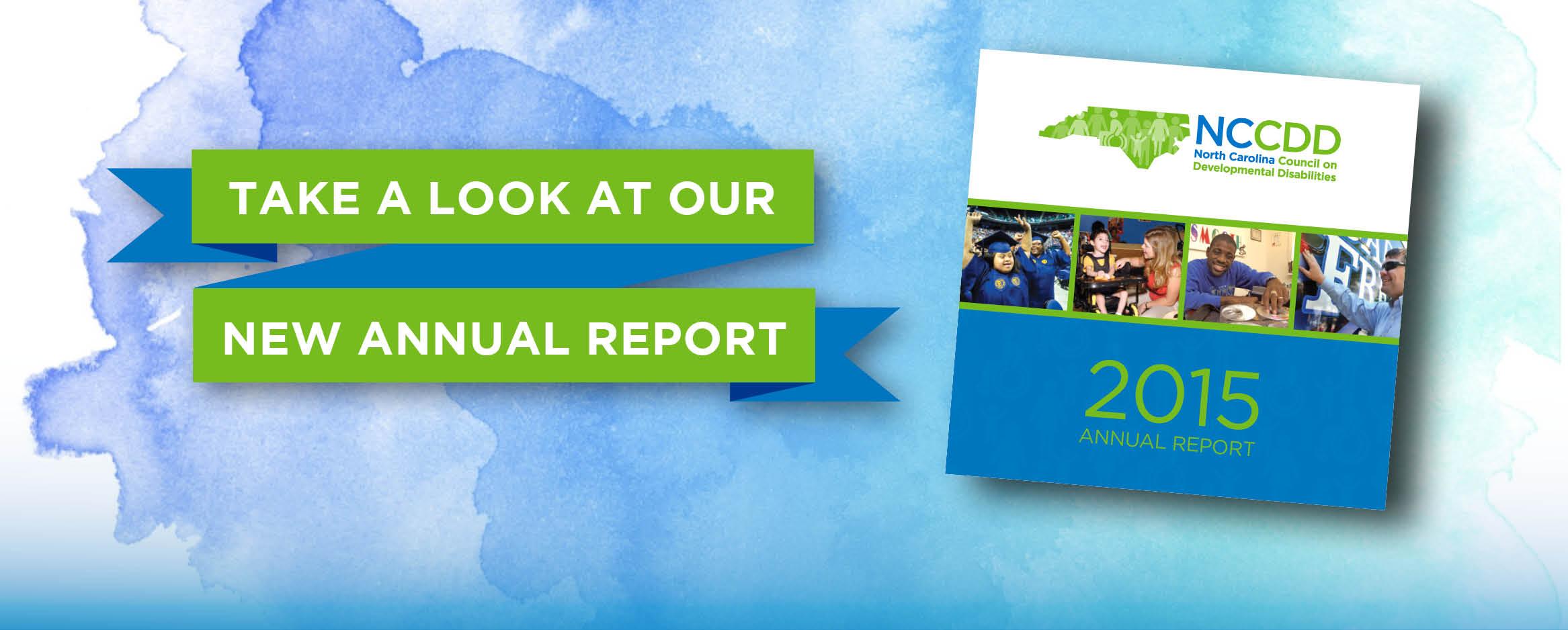 NCCDD 2015 Annual Report