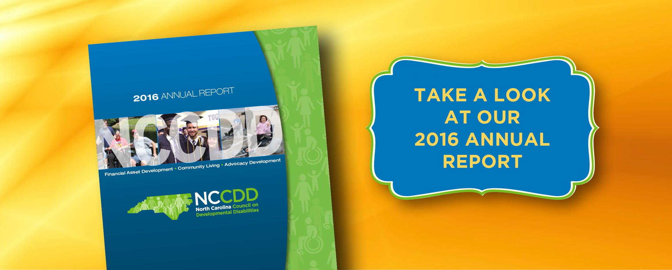 NCCDD 2016 Annual Report