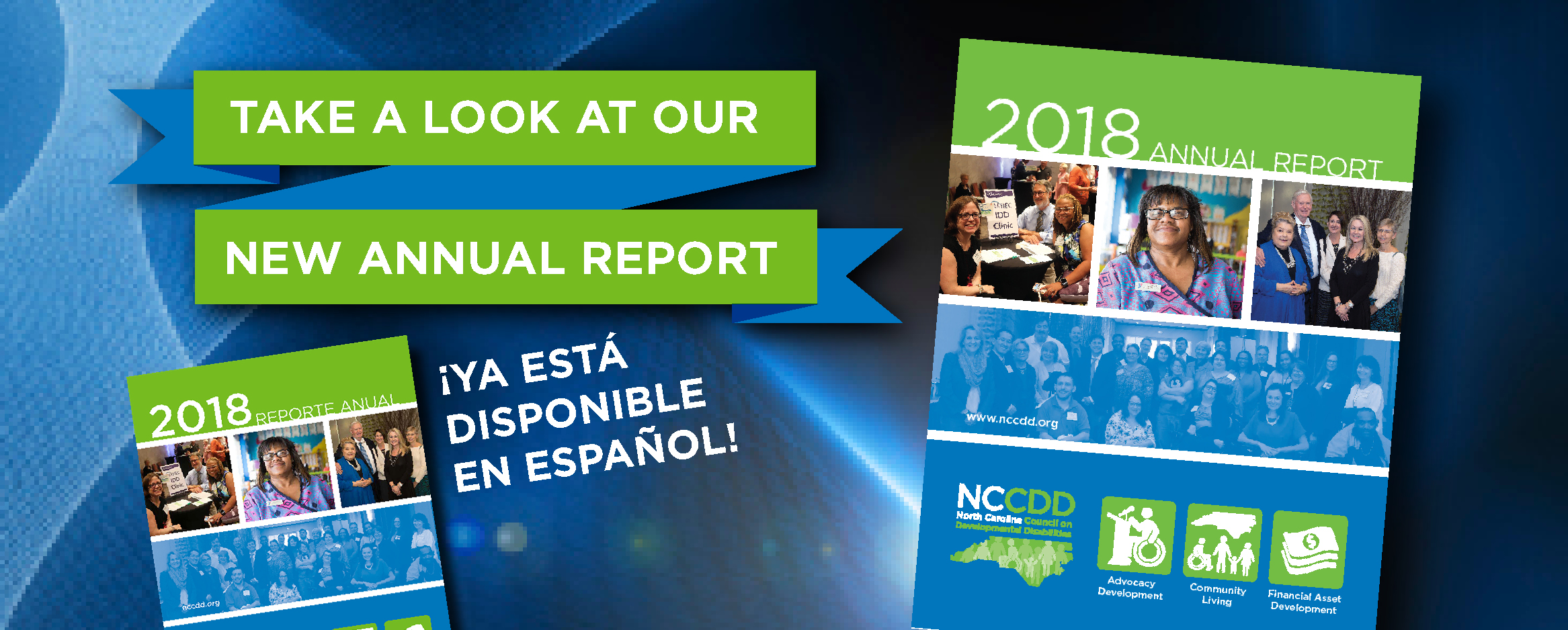 NCCDD 2018 Annual Report ¡Ya está disponible en español!
