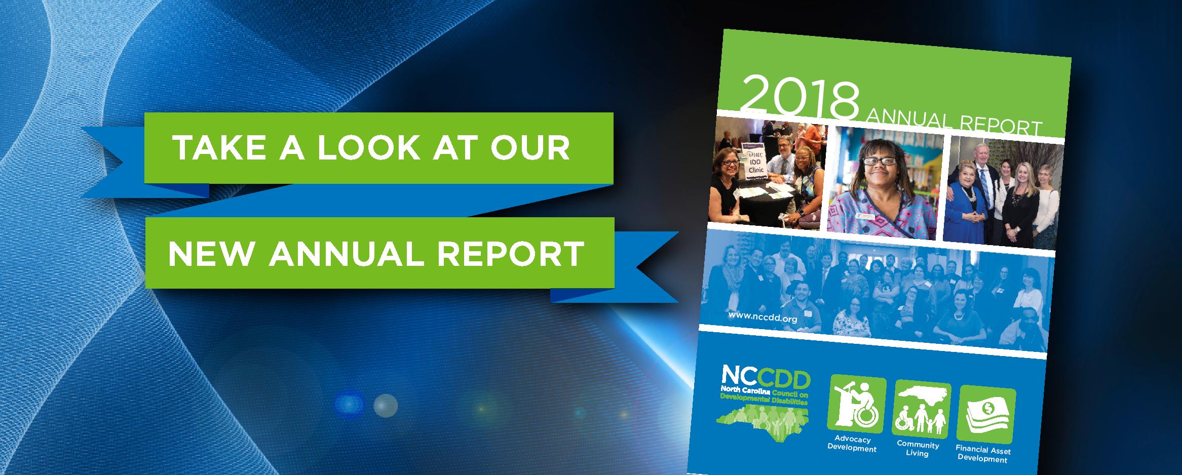 NCCDD 2018 Annual Report